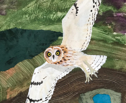 Short Eared Owl Mixed Media And Collage 75 X 54 Cm £950