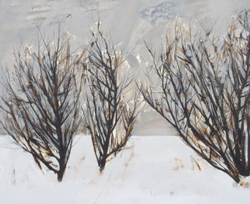 Snow Storm February 2018