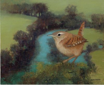 Wren Above The River