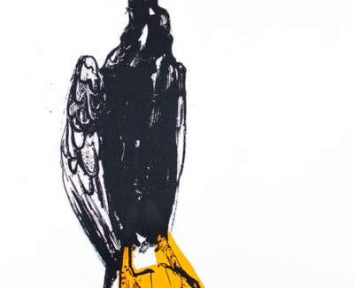 4 Orange Cormorant