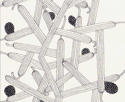 A Proliferation Of Cactus Limbs Pen On Paper 21 5 X 13Cm £195
