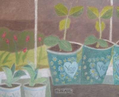 April Seedlingsweb