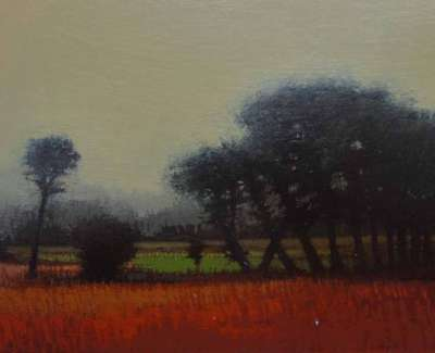 Autumn Scots Pinesweb