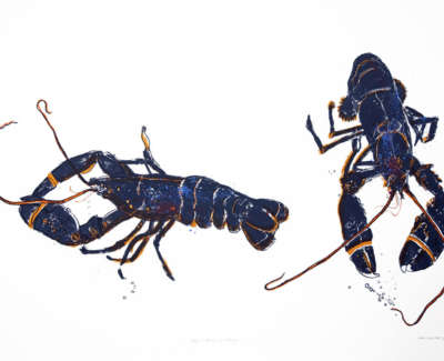 Blue Lobsters