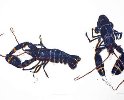 Blue Lobsters