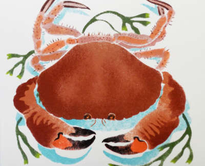 D Crab 1  12 Framed Exampleweb