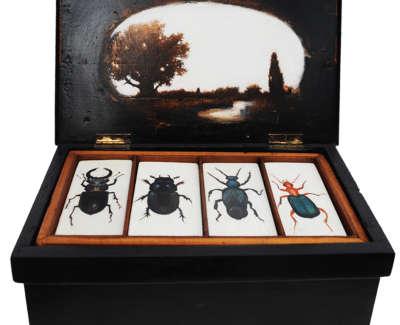 Darwins Beetle Box Oil On Vintage Box 15 X 32 X 20 Cm £600 00 White Background