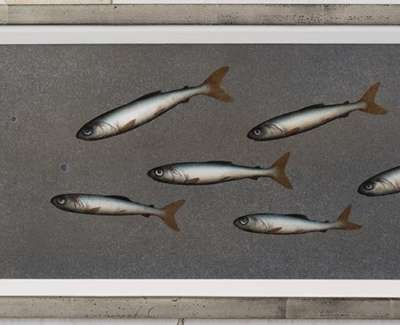 Eight Fish And Eight Blue Spots Oil On Panel 17 5X57Cm £1400