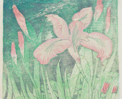Elsie Marion Henderson Iris By A Pond