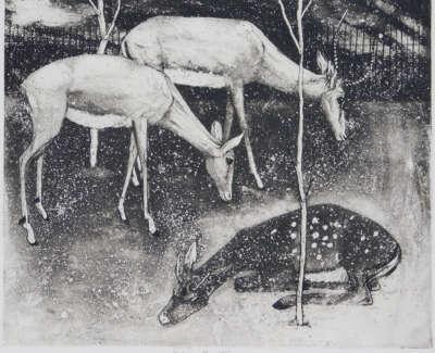 Erik Smith Deer