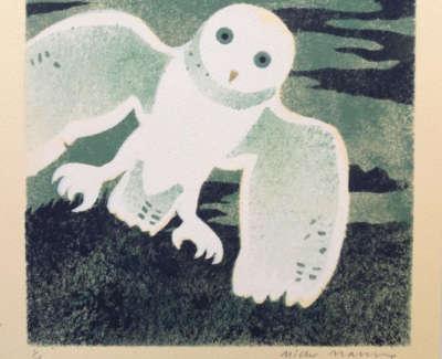 Framed Green Owl 1 Of Ten Web
