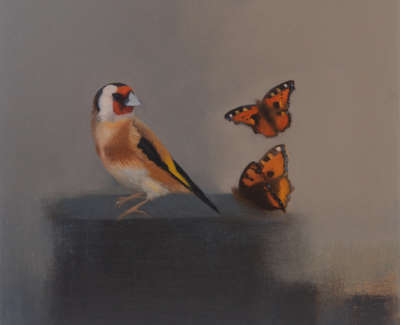 Goldfinch With Tortoiseshell Butterflies  Oil On Panel 30 X 30 Cm £800 00