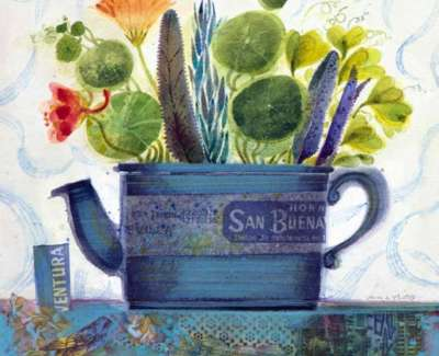 Herbs San Buenaventuraweb