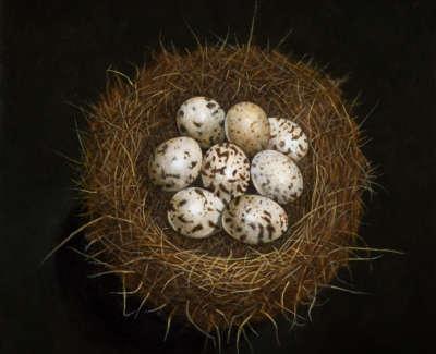 James Fairgrieve  Jimmys Eggs Quail Acrylic On Gesso On Board 30 5 X 30 5 Cm £1995 00