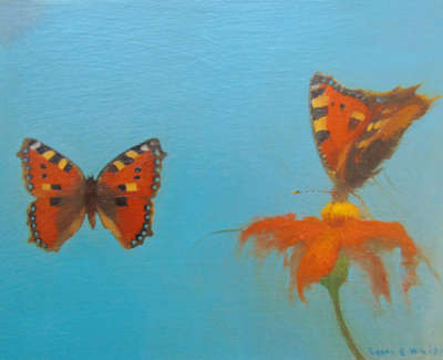 Lynne E  Windsor  Tortoiseshell Butterflies With Cosmos  Oil On Board £375 00Web