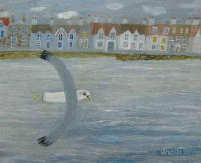 Mc Innes A Gull From Fifeweb