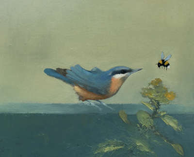 Nuthatch With Bumblebee Vi Oil On Cradled Panel 30 X 30 Cm £800 00