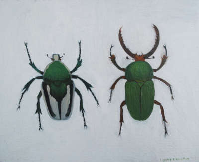 Real Fruit Beetle And Antler Jaw Stage Beetle  Oil On Pittura Paper In Vintage Frame 13 5 X 18 Cm £250 00