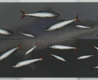 Shadow Shark Oil On Metal 49X154Cm