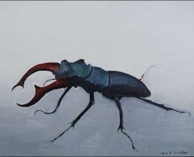 Stag Beetle Oil On Pittura Paper 13 5 X 18 Cm