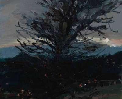 The Naked Tree Craiglockhart Jpegweb