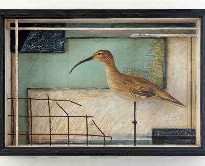 Malcolmson  A  Shorebird Mixedmdiaboxconstruction 40X57X12 595