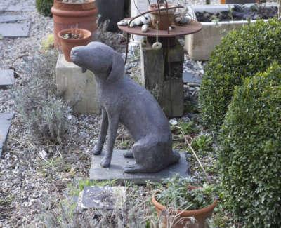 Marvell C Seated Doginthe Garden V